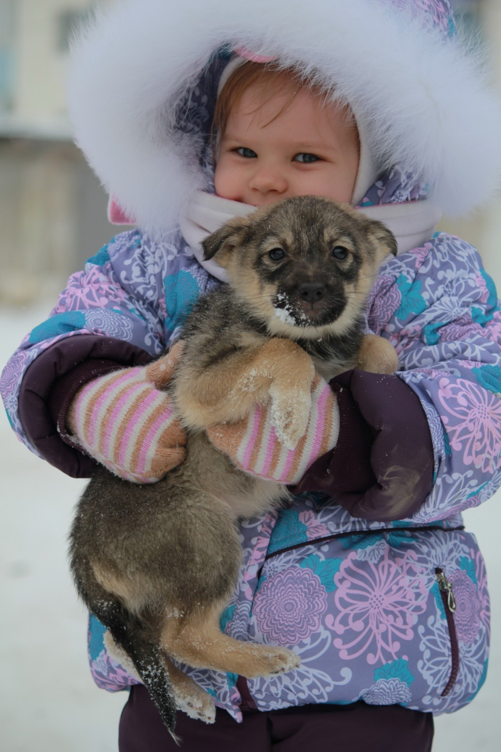 Чаще всего общение с животными приносит ребенку радость.