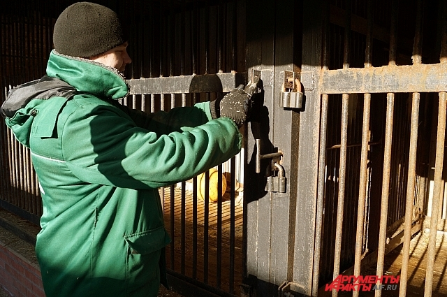 Ответственный за млекопитающих проверяет замки