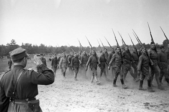 1-я Польская пехотная дивизия