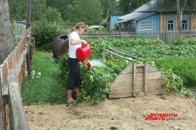 Важно соблюдать правила бесопасности после обработки участка от насекомых.