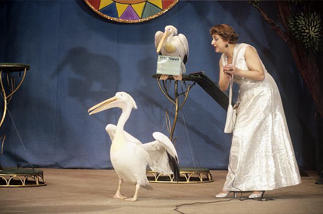 Наталья Дурова выступает с пеликанами Пилей и Камой. 1980 г.