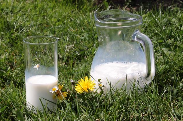 В рамках форума обсудили возможность обеспечения молочными продуктами организации соцсферы.