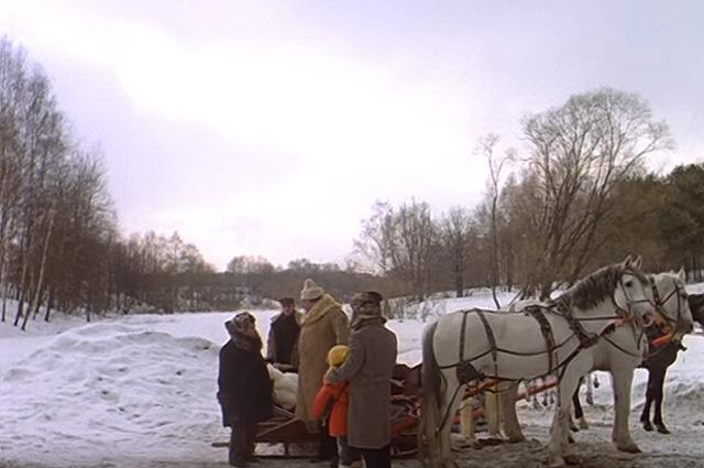 Сцены с лошадьми снимали на аллеях московского Ботанического сада.