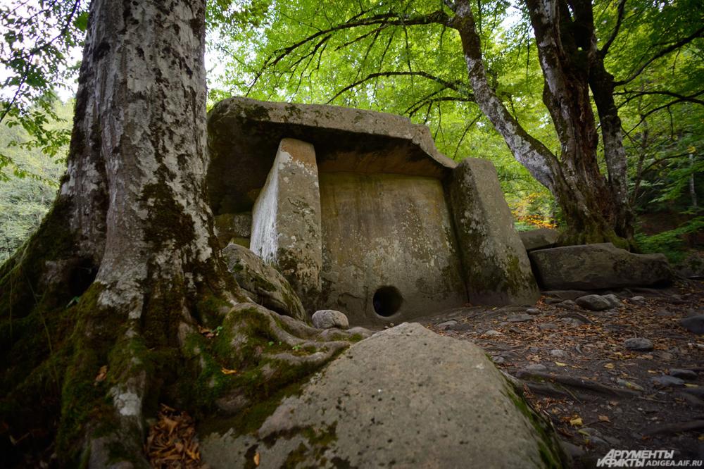 Сохранившийся дольмен в поселке Гузерипль.
