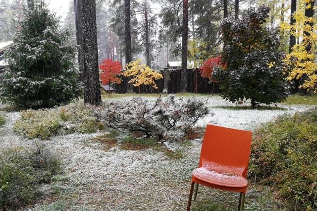 Пользователи социальных сетей делятся фотографиями первого снега.
