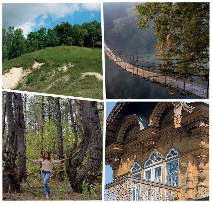 Альпийские луга с краснокнижными растениями под Погаром; навесной мост в Хотылёве - один из красивейших в мире; паранормальный «Ведьмин лес» близ Синезёрок; уникальное деревянное кружево злынковских домов.