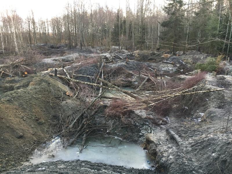 «Черные копатели» оставили после себя вырытые ямы.