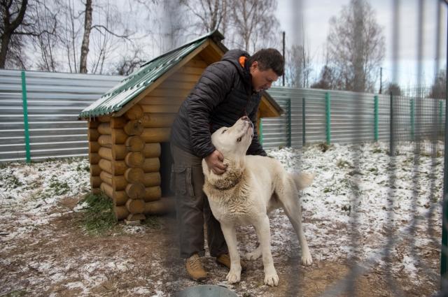 «Я здесь надолго, - говорит Руслан. - Хочу преобразить эту землю, отвоевать её у леса. Работать на земле - это интересно, хоть и тяжело».