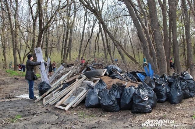 Рощу на улице Российской в Первомайском районе очистили от мусора.