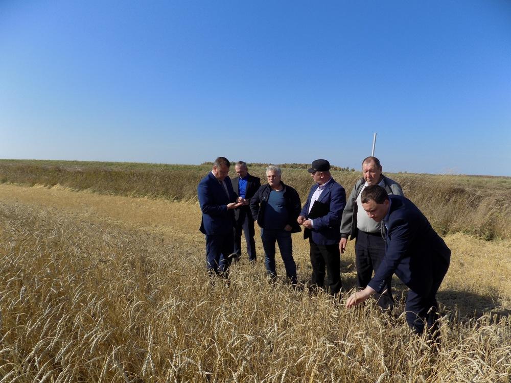 Сельское хозяйство - основа экономики района.