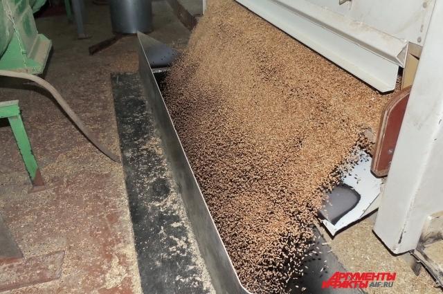 Сепаратор на элеваторе Краснодара очищает пшеницу от различных примесей.