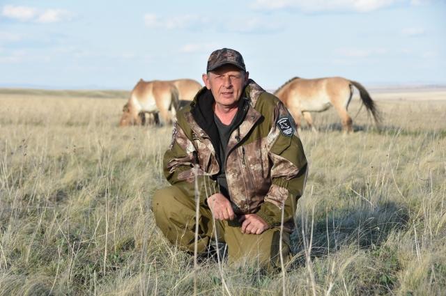 Лошади Пржевальского немного привыкли к инспектору Дмитрию Немальцеву, но они по-прежнему - дикие животные.