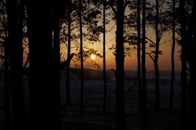 После ужина можно полюбоваться закатом в зимнем лесу.