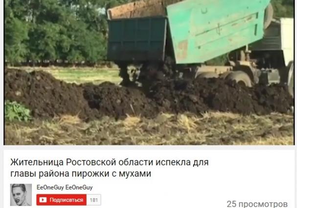 Таганрогская птицефабрика вывозит отходы производства, на которые слетаются полчища мух,  на поля рядом с Некрасовкой