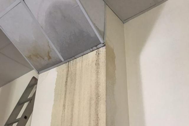 Канализационные стоки полностью повредили обои на стене.