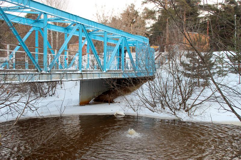 С этого моста лебедю кинули смертельный корм