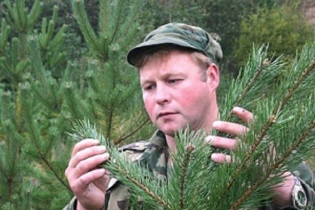 Правильно выбранная елка будет радовать вас все новогодние каникулы.