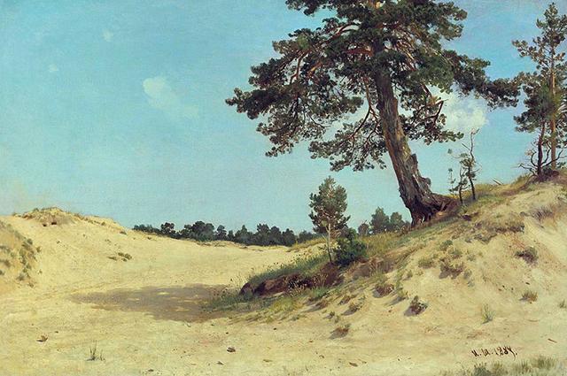 Сосна на песке,1884 г