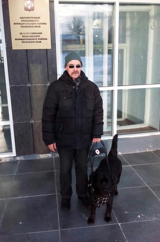 Собаку-поводыря инвалида зовут Ева, ей всего три года.