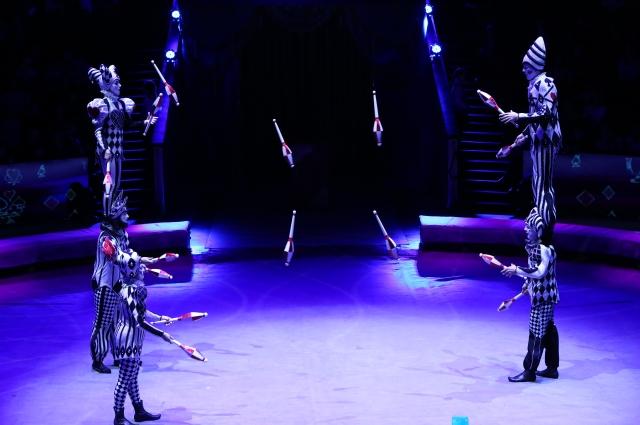 В этом представлении задействовано множество артистов.