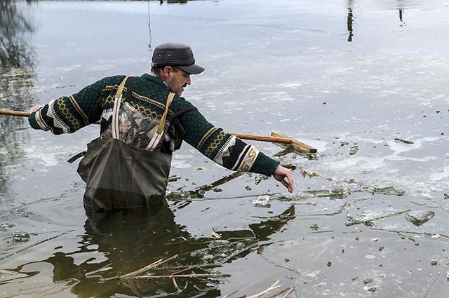 Некоторые рыбки соскочили на лед, и их пришлось оттуда снимать.