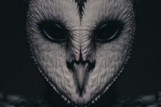 Клип полон мистики. Главным образом в новой видеоработе представлена сова, которая соединяет два мира, две реальности.