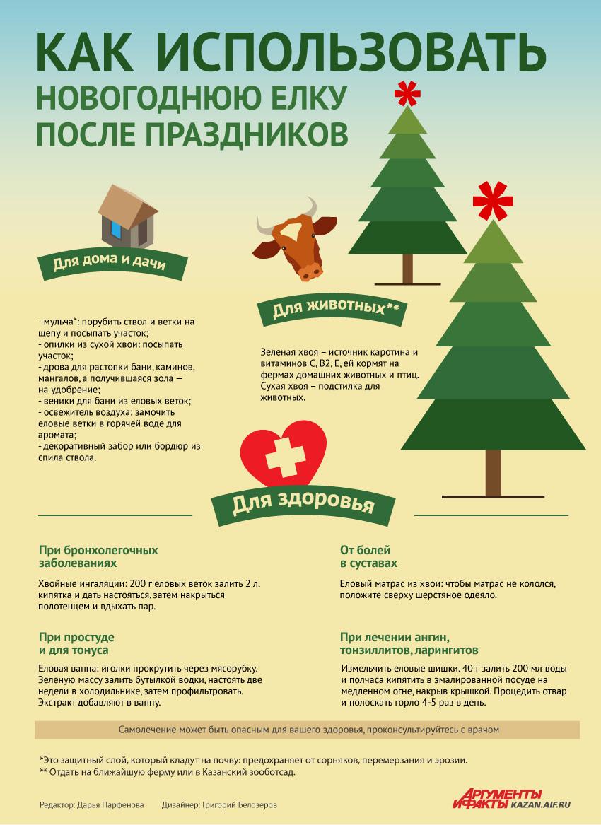 утилизация елки, как утилизировать елку, куда деть елку после праздников, елка
