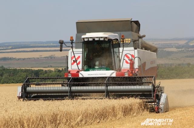 На юге страны началась уборка урожая, он обещает быть рекордным!