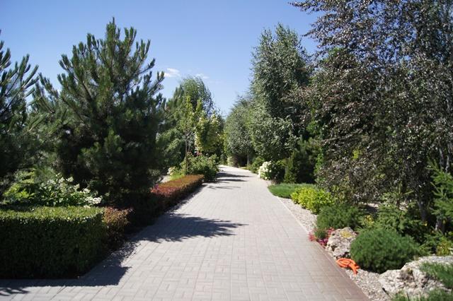 Поступили предложения огородить некоторые дома зеленой изгородью