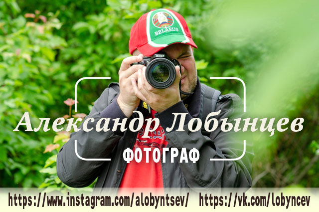 Александр Лобынцев