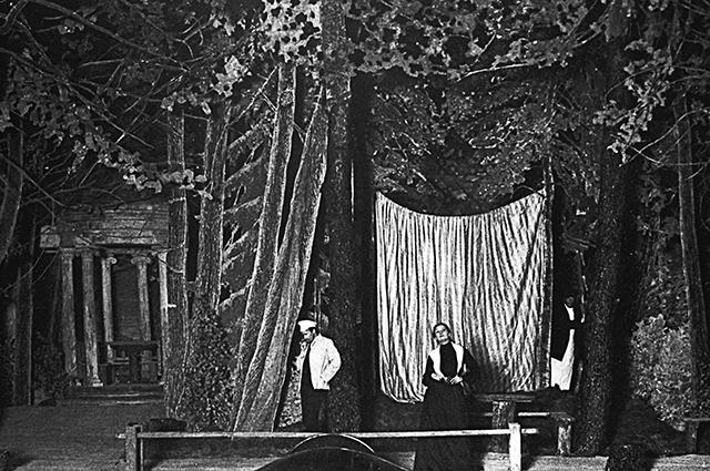 Сцена из спектакля по пьесе А. П. Чехова «Чайка» в постановке К. Станиславского и В. Немировича-Данченко.