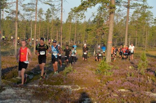 Маршрут ультрамарафона проходит по болотам, горным участкам и лесным тропам.