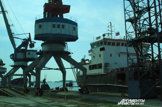 Порты России переориентируются на поставку дешёвого зерна в новые страны мира.