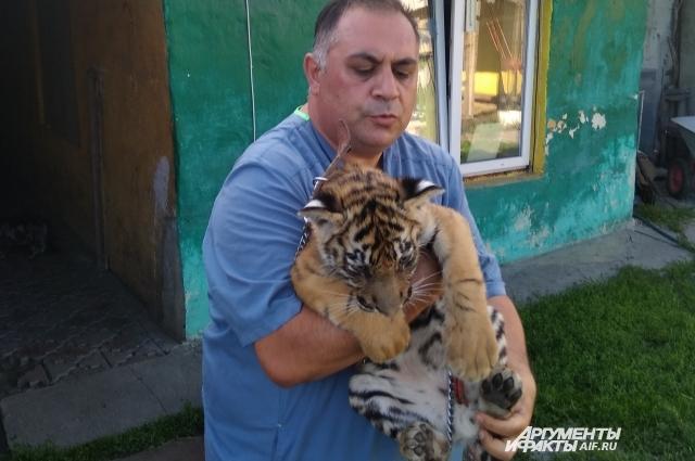 Даллакян носит Гектора на руках, как маленького котенка.