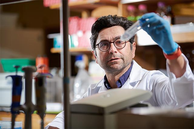 Профессор Ардем Патапутян из отдела нейробиологии Scripps Research.