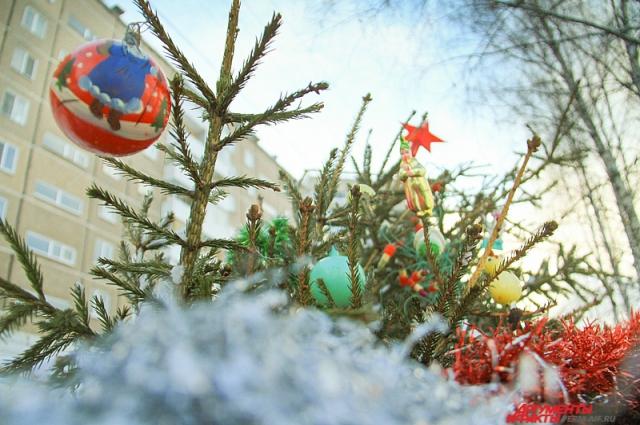 Кстати, на елках нередко остаются игрушки – их просто лень снимать, да и кто сейчас думает об украшениях к следующему Новому году?