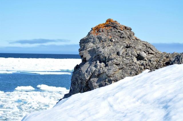 Иногда опознать землю подо льдом нелегко.