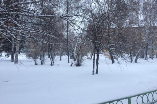 За ночь выпал почти 10 сантиметровый слой снега.