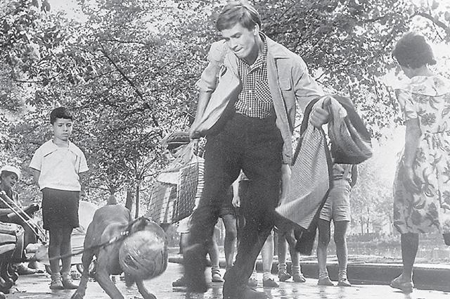 Наши герои выходят на Чистопрудный бульвар, где Володю кусает собака.