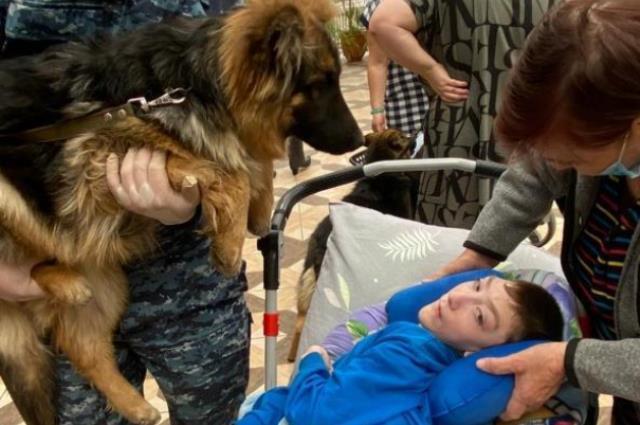 Навещать детей в хоспис приезжают кинологи со служебными собаками.