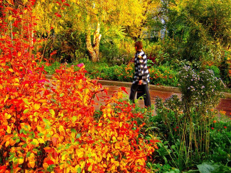 Осень – прекрасное время и в жизни, и на фото.