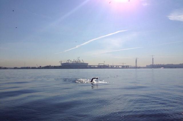 Спортсмен плыл без остановок от Ладожского озера до Финского залива.