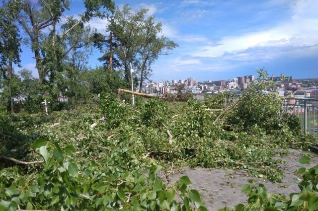 Нагорный парк после урагана