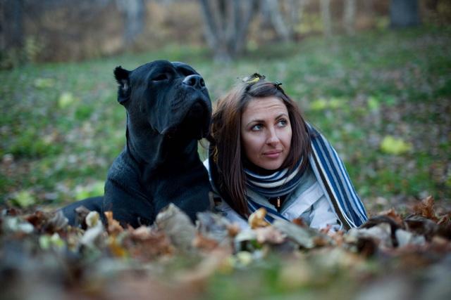 Собаки зачастую копируют поведение хозяина.