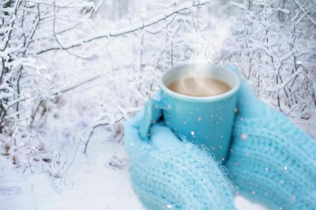 А термос наливаем любимый зимний напиток и вперед - на прогулку в зимний лес!