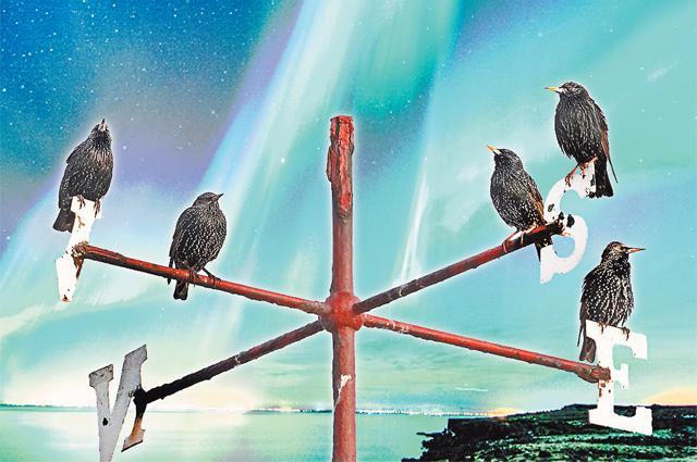 Картина Саврасова «Грачи прилетели»... наТаймыр? Больше всего от смещения полюсов страдают птицы, ведь они ориентируются по силовым линиям магнитного поля Земли.