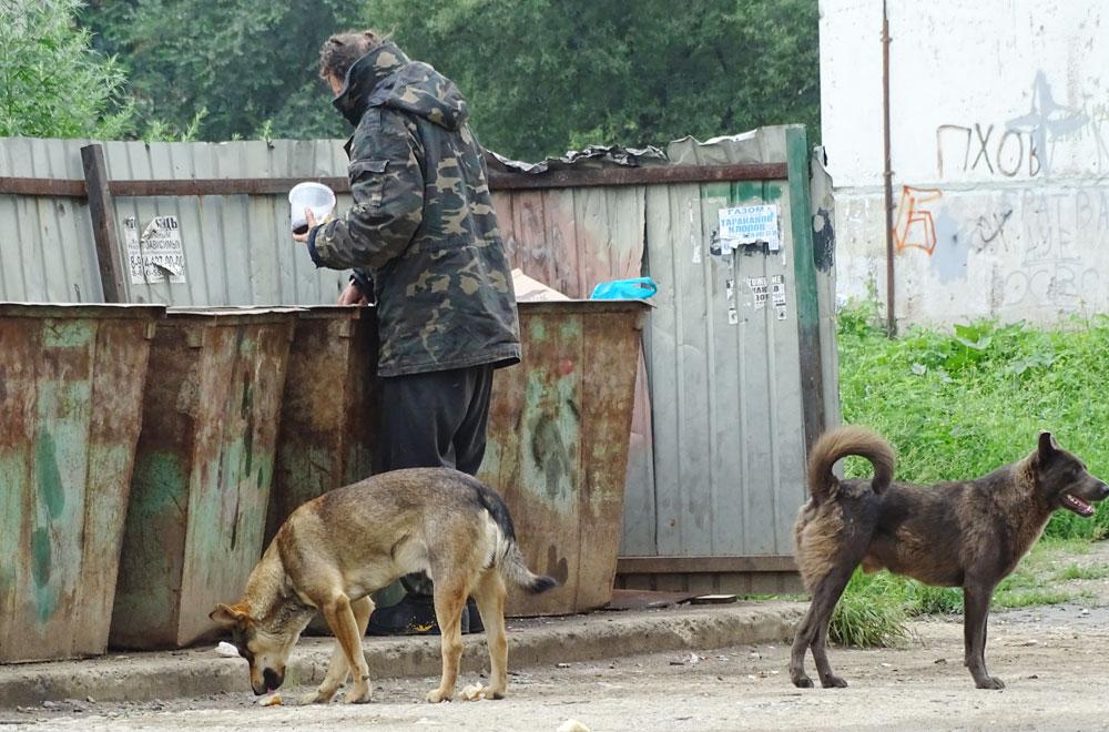 Саша и его собаки роются на помойке.