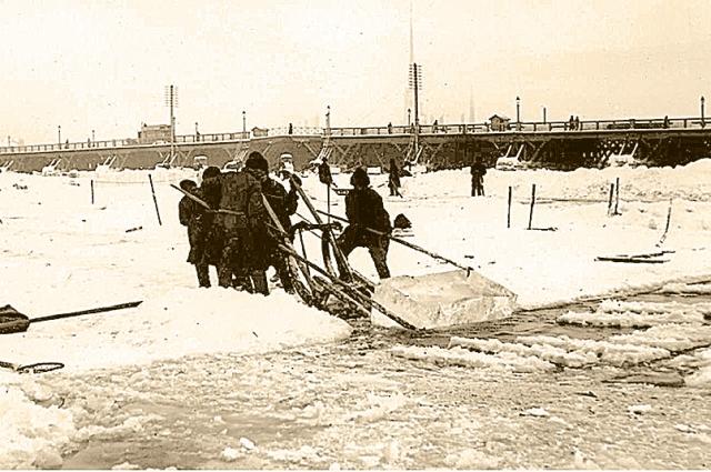 Лёд нарезали  огромными параллелепипедами.