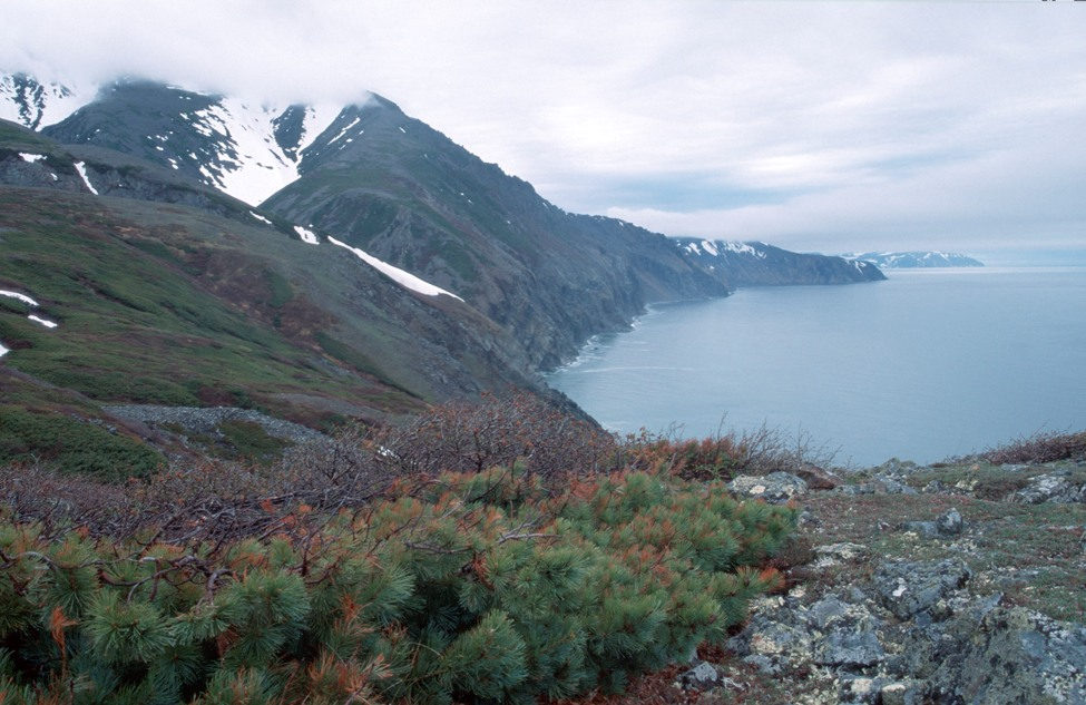 Побережье Охотского моря.