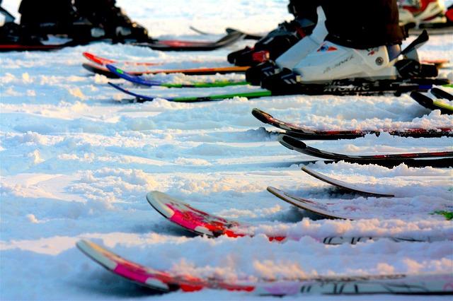 Существует огромное разнообразие лыж.